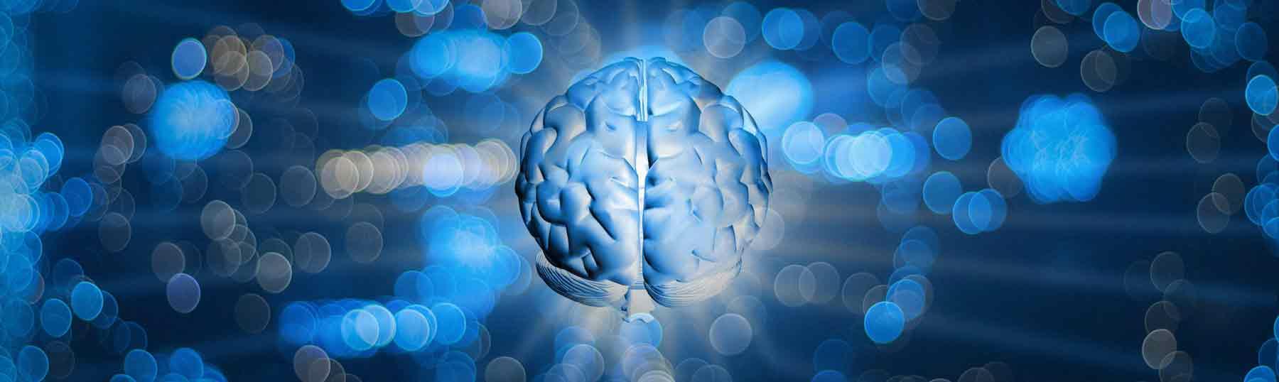brain-blog-bg2